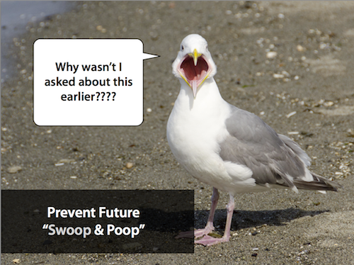 Avoid Swoop and Poop